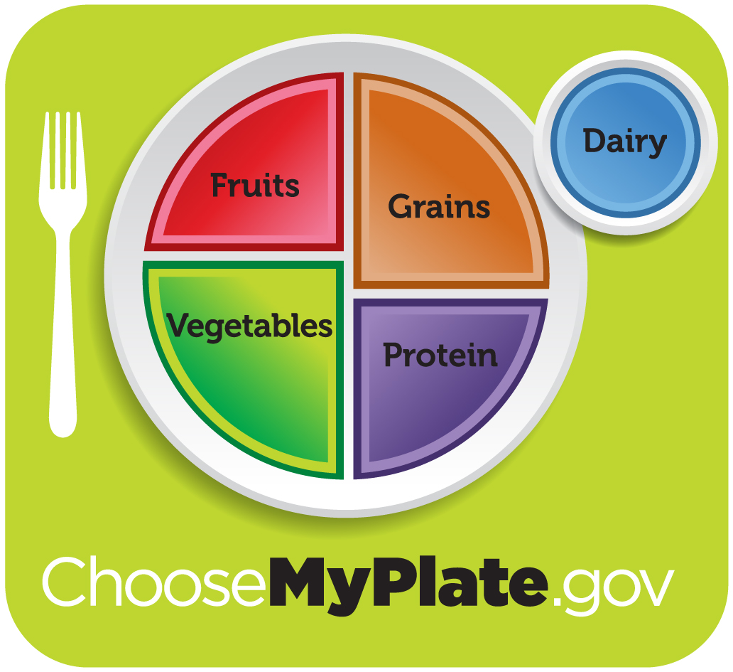 Healthy diet logo shows a plate divided into four sections, labeled fruits; vegetables; grains; and protein. The vegetables section is slightly larger than the other three. A circle to the side of the plate is labeled dairy. Beneath the plate is the web address, which reads Choose My Plate dot gov.