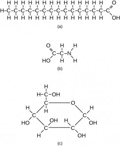Examples of three different carbon-containing molecules.