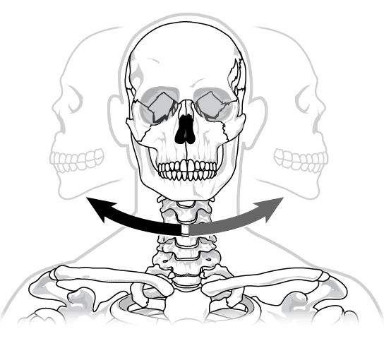 Illustration shows a human skull twisting left and right on the neck in a pivot-like motion.