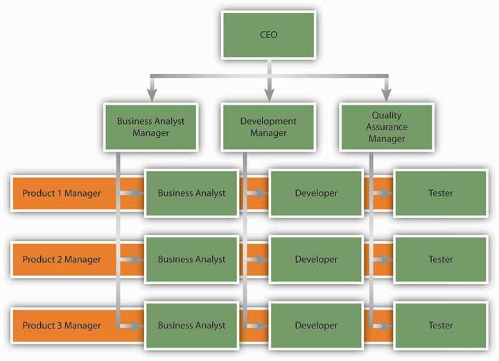 Image result for matrix organizational structure