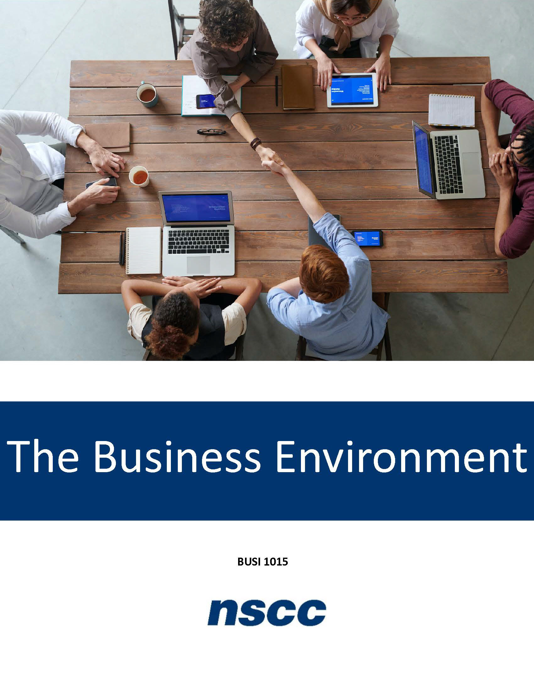 Cover image for The Business Environment