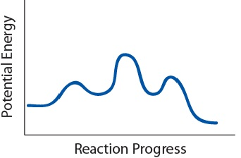 Potential energy plot of a given reaction mechanism