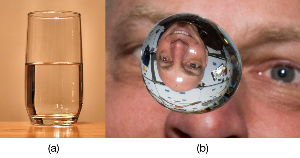 """(a) A liquid fills the bottom of its container as it is drawn downward by gravity and the particles slide over each other. (b) A liquid floats in a zero- gravity environment. The particles still slide over each other because they are in the liquid phase, but now there is no gravity to pull them down. Source: """"Glass of Water"""" by Derek Jensen is in the public domain; """"Clayton Anderson zero g"""" s in the public domain because it was solely created by NASA."""