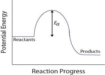 Figure 17.1-4. Potential energy diagram for a hypothetical reaction.