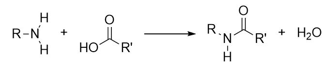 amide_bond_condensation