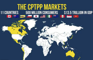The CPTPP Markets for Trade